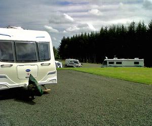 Beecraig's Camping and Caravan Site, Scotland