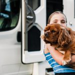 Pet friendly campervan hire