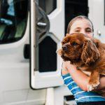 Pet friendly campervan hire