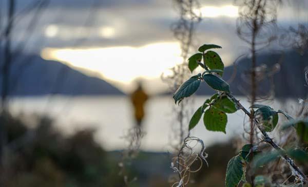 Highland to Hammocks- Lakes