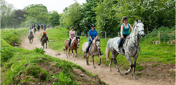 Riders enjoying their horseback riding at Shean's Horse Farm